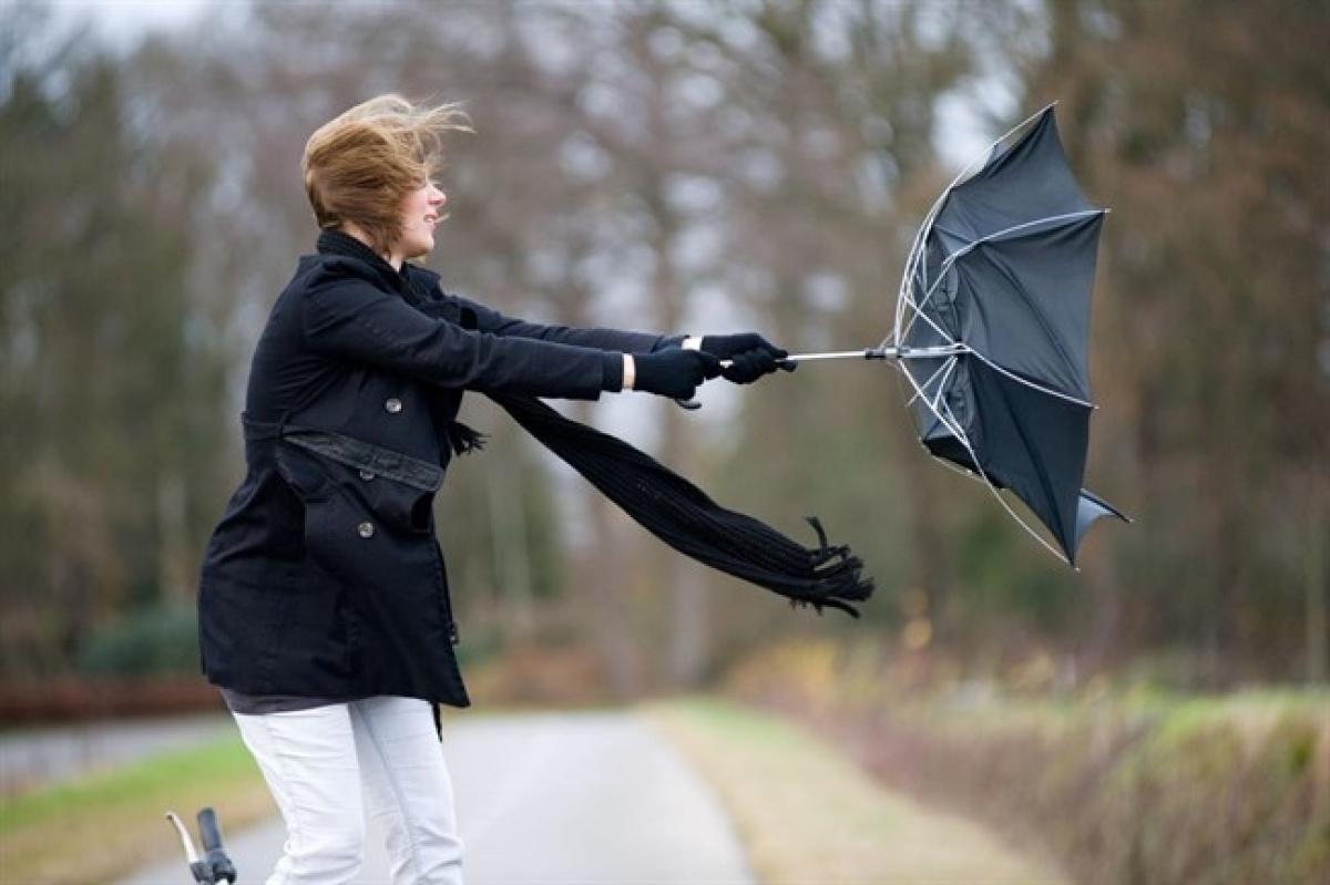 НаКировскую область надвигаются дожди с необычайным ветром— МЧС