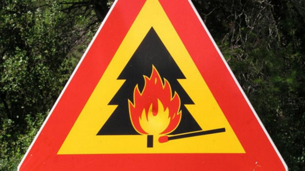 В Курской области из-за жары объявили «жёлтый» уровень пожарной опасности