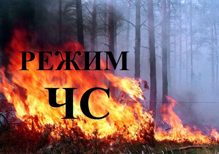 Лесной пожар наЮжном Урале потушили ссамолета